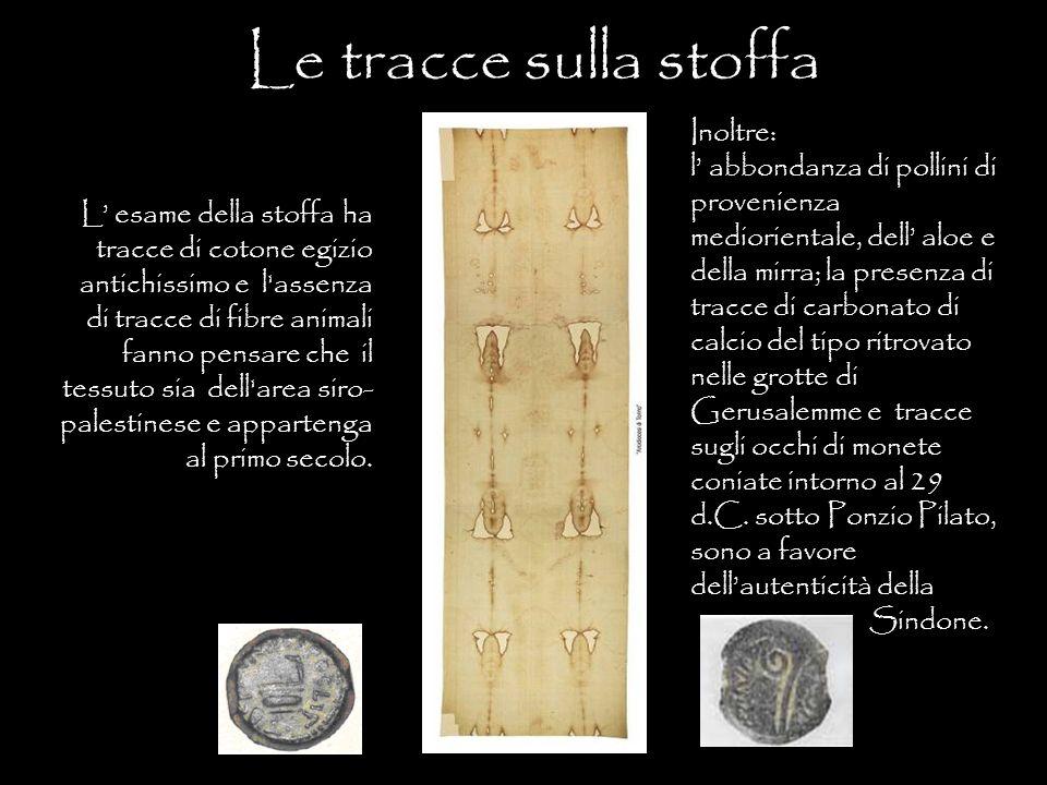 Le tracce sulla stoffa L' esame della stoffa ha tracce di cotone egizio antichissimo e l'assenza di tracce di fibre animali fanno pensare che il tessu