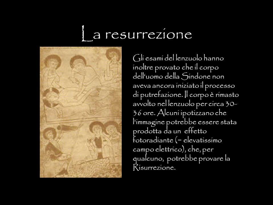 La resurrezione Gli esami del lenzuolo hanno inoltre provato che il corpo dell'uomo della Sindone non aveva ancora iniziato il processo di putrefazion