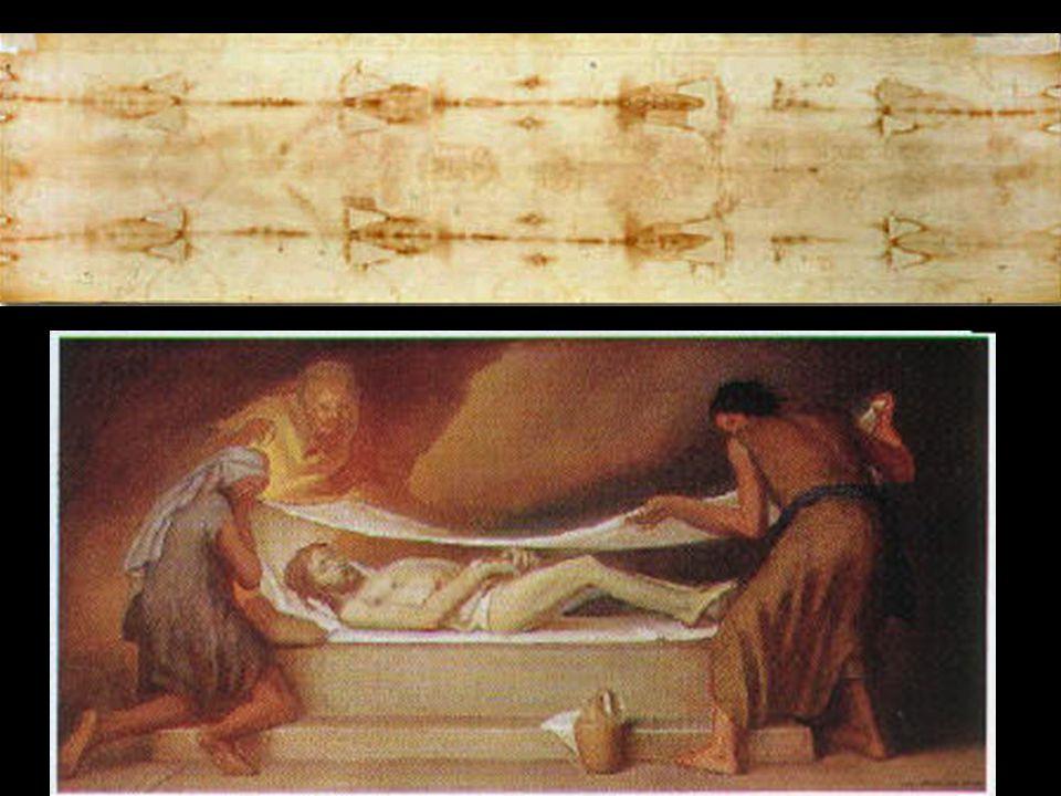 La Sindone E' un lenzuolo di lino, lungo cm 437 e largo cm 111.