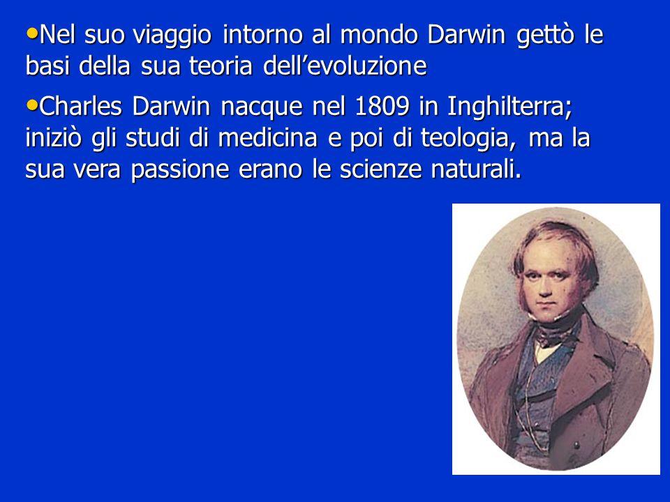 Nel suo viaggio intorno al mondo Darwin gettò le basi della sua teoria dell'evoluzione Nel suo viaggio intorno al mondo Darwin gettò le basi della sua