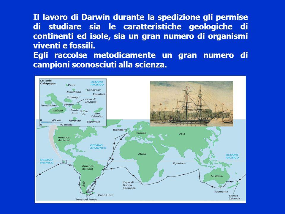 Il lavoro di Darwin durante la spedizione gli permise di studiare sia le caratteristiche geologiche di continenti ed isole, sia un gran numero di orga