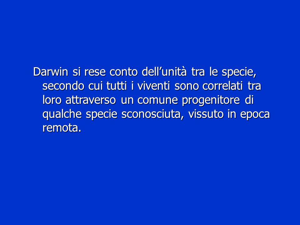 Darwin si rese conto dell'unità tra le specie, secondo cui tutti i viventi sono correlati tra loro attraverso un comune progenitore di qualche specie