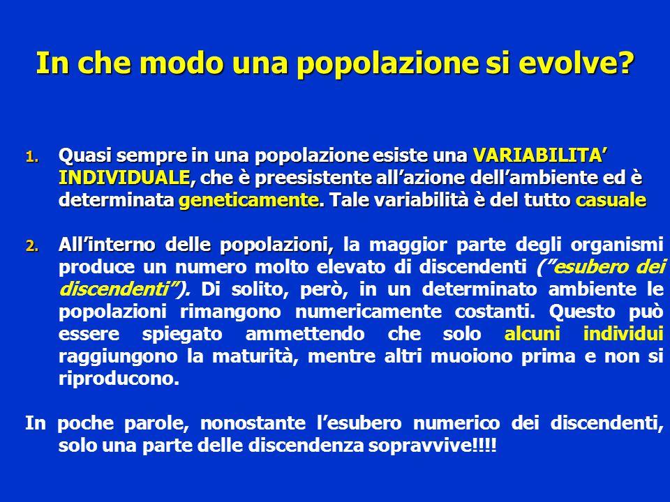 In che modo una popolazione si evolve? 1. Quasi sempre in una popolazione esiste una VARIABILITA' INDIVIDUALE, che è preesistente all'azione dell'ambi