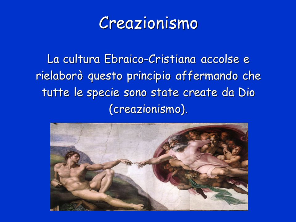 Linneo e l'immutabilità delle specie I Il Creazionismo dominò la cultura occidentale per molti secoli.