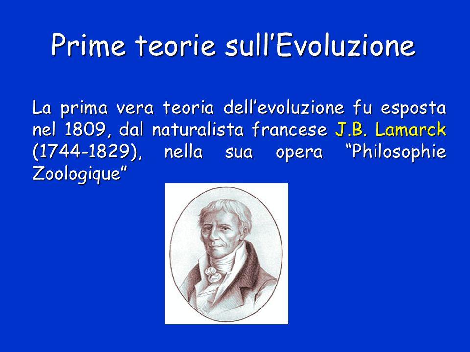 Prime teorie sull'Evoluzione La prima vera teoria dell'evoluzione fu esposta nel 1809, dal naturalista francese J.B. Lamarck (1744-1829), nella sua op