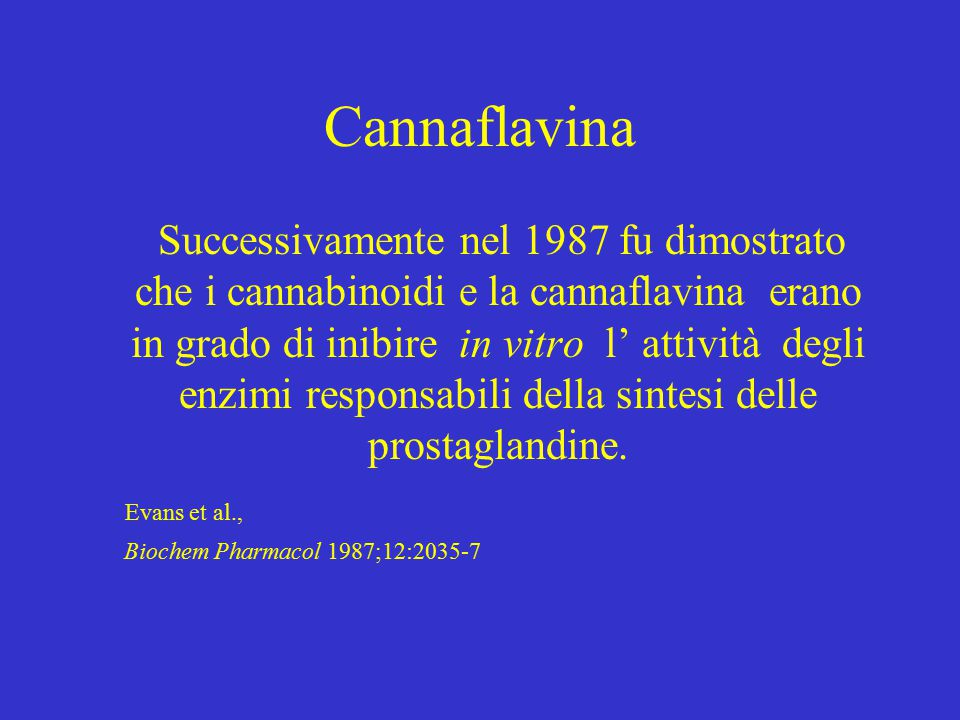 Cannaflavina Successivamente nel 1987 fu dimostrato che i cannabinoidi e la cannaflavina erano in grado di inibire in vitro l' attività degli enzimi responsabili della sintesi delle prostaglandine.