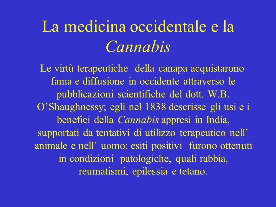 Così nel corso del XIX secolo la medicina occidentale adottò la Cannabis come farmaco per la sua efficacia antiemetica, analgesica e anticonvulsivante.