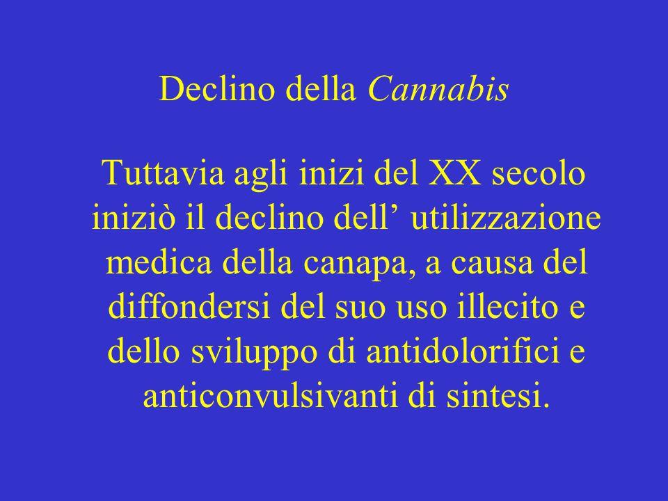 Declino della Cannabis Tuttavia agli inizi del XX secolo iniziò il declino dell' utilizzazione medica della canapa, a causa del diffondersi del suo uso illecito e dello sviluppo di antidolorifici e anticonvulsivanti di sintesi.