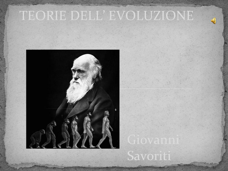 Giovanni Savoriti TEORIE DELL' EVOLUZIONE