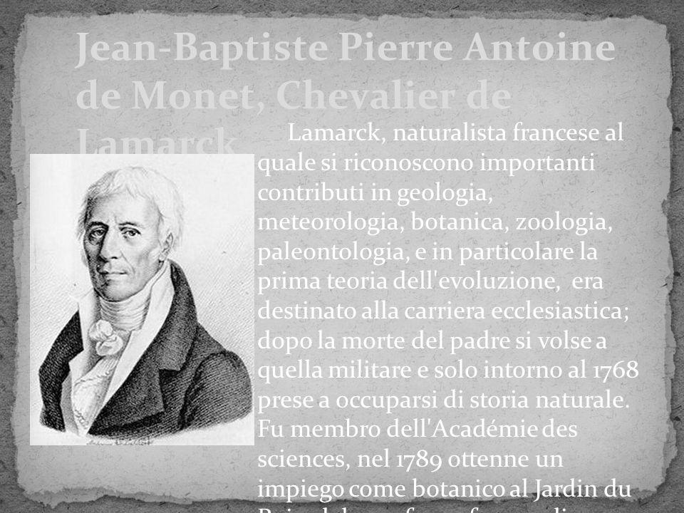 Lamarck, naturalista francese al quale si riconoscono importanti contributi in geologia, meteorologia, botanica, zoologia, paleontologia, e in partico