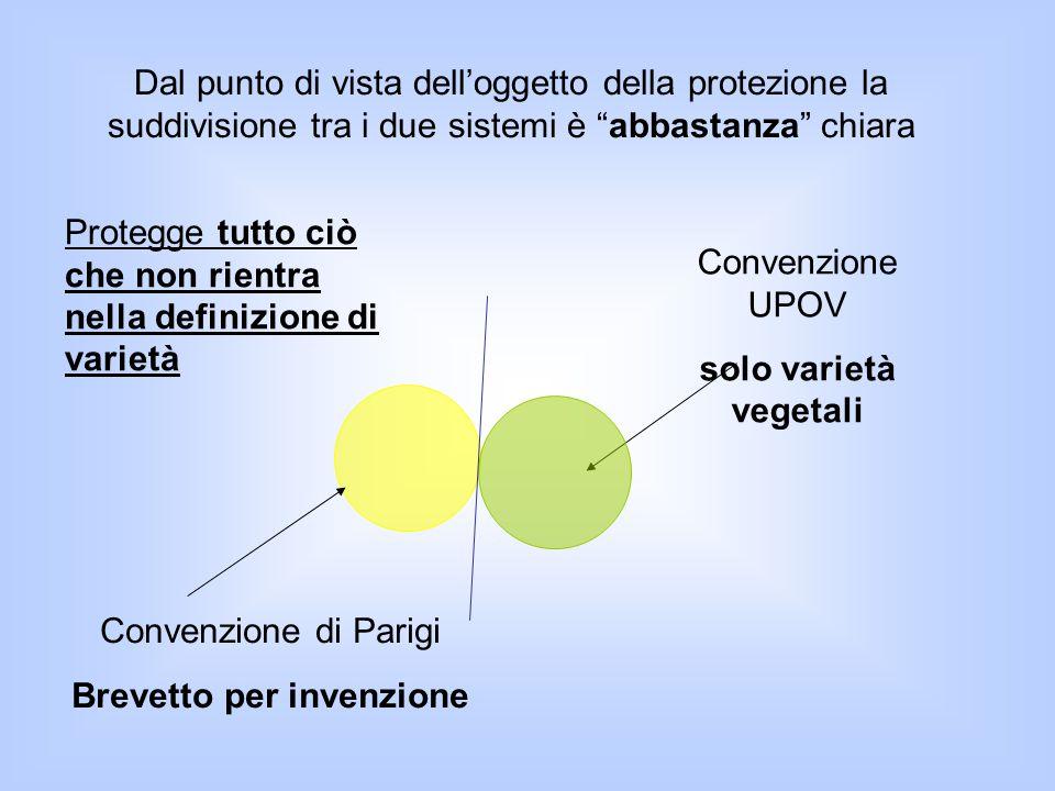 """Dal punto di vista dell'oggetto della protezione la suddivisione tra i due sistemi è """"abbastanza"""" chiara Convenzione UPOV solo varietà vegetali Conven"""