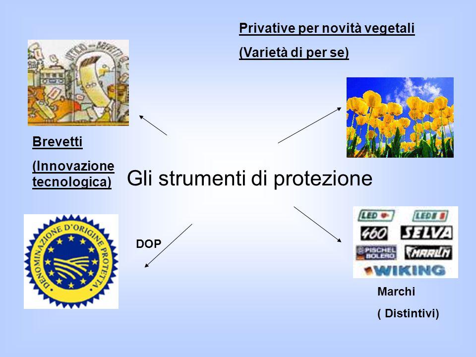 Brevetti (Innovazione tecnologica) Privative per novità vegetali (Varietà di per se) DOP Marchi ( Distintivi) Gli strumenti di protezione