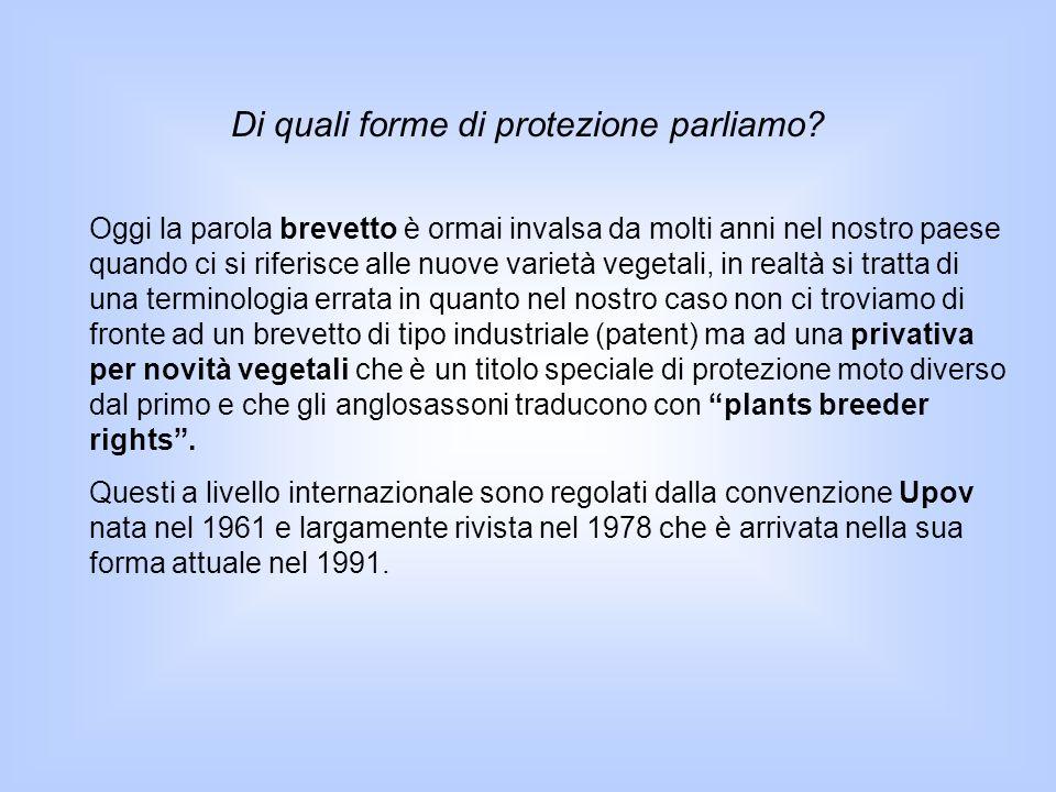 UPOV 1991 Estensione della tutela tra tutti i generi e specie Possibilità per i singoli stati membri di istituire la doppia tutela patent e diritto del costitutore L'esenzione del coltivatore è stata resa facoltativa (art.