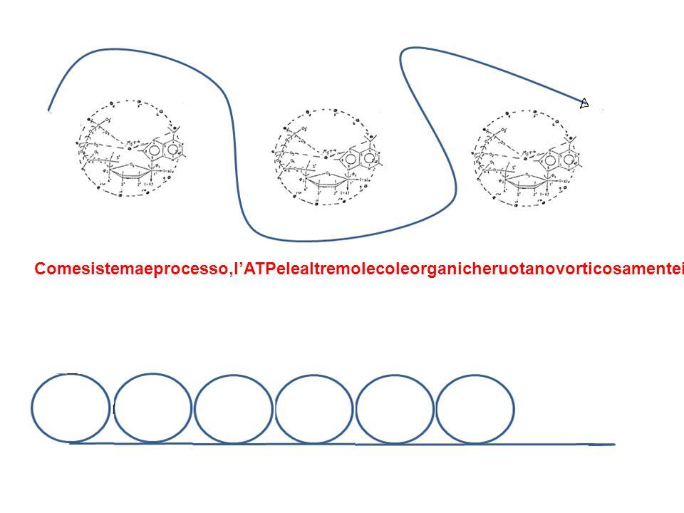 Comesistemaeprocesso,l'ATPelealtremolecoleorganicheruotanovorticosamenteinunasortadisinfoniacomeunadanzasincrona(tipol'apprendistastregone)cheproduceunaforzadi LorentzcapacediinnescarereazioniditipoLER, CHE POTREBBERO ESSERE ANCHE CONSIDERATE LENR.