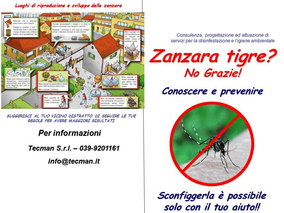 Sconfiggerla è possibile solo con il tuo aiuto!. Zanzara tigre.