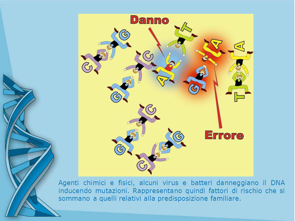 Agenti chimici e fisici, alcuni virus e batteri danneggiano il DNA inducendo mutazioni.