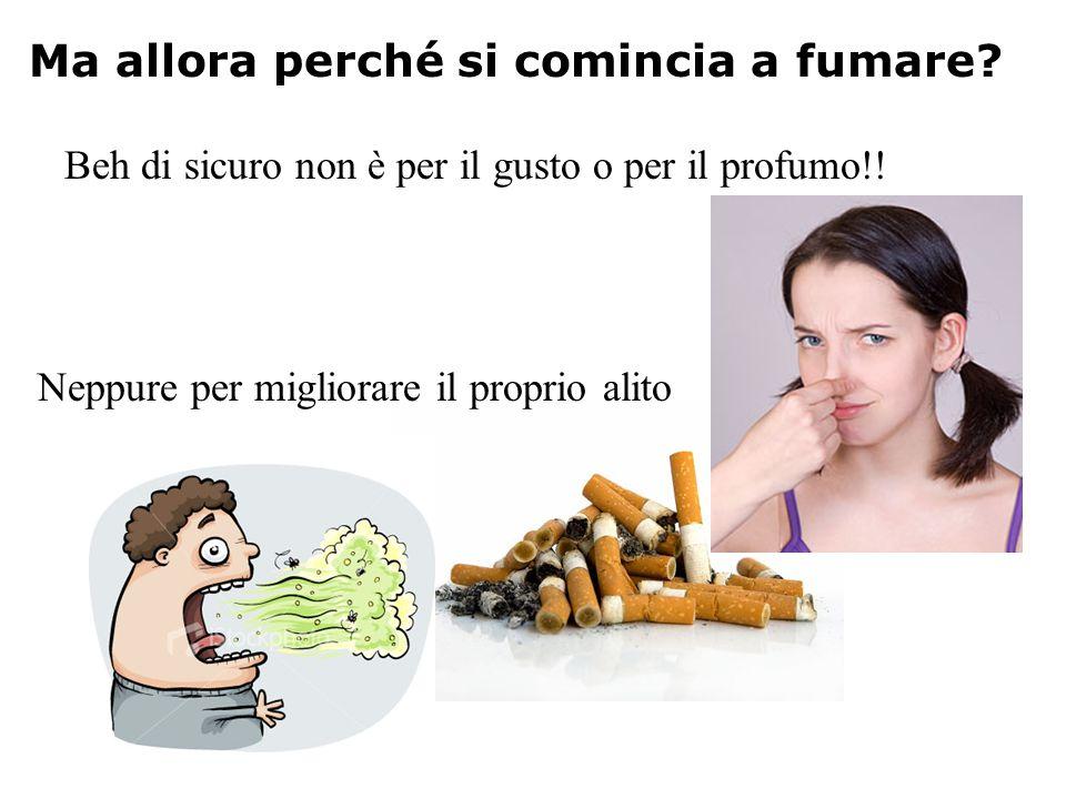 Ma allora perché si comincia a fumare? Beh di sicuro non è per il gusto o per il profumo!! Neppure per migliorare il proprio alito