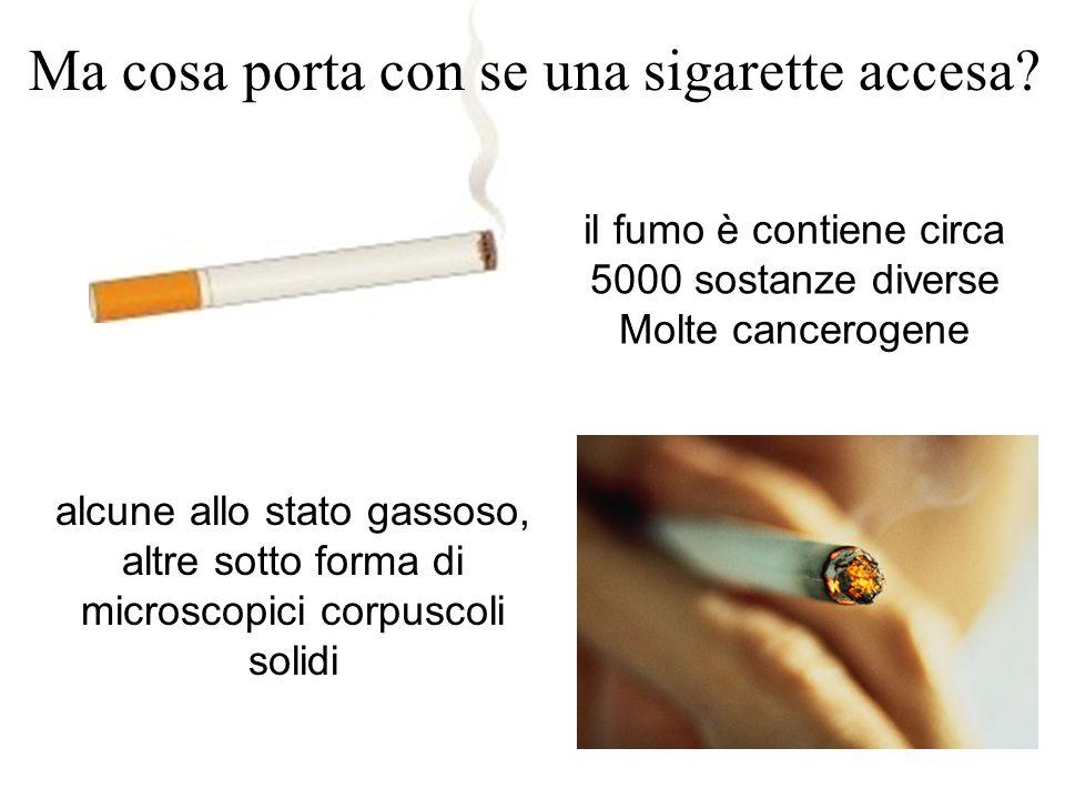 il fumo è contiene circa 5000 sostanze diverse Molte cancerogene Ma cosa porta con se una sigarette accesa? alcune allo stato gassoso, altre sotto for