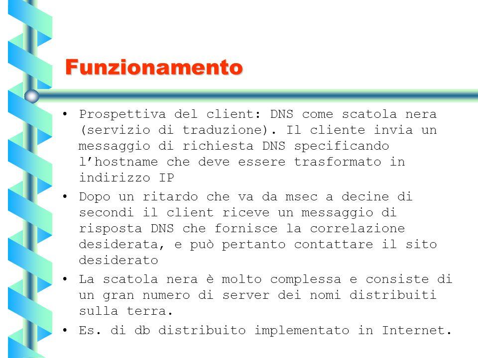 Funzionamento Prospettiva del client: DNS come scatola nera (servizio di traduzione). Il cliente invia un messaggio di richiesta DNS specificando l'ho