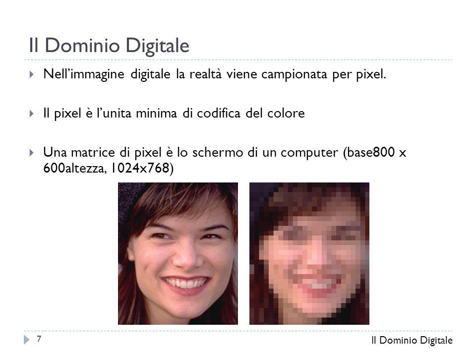  Nell'immagine digitale la realtà viene campionata per pixel.