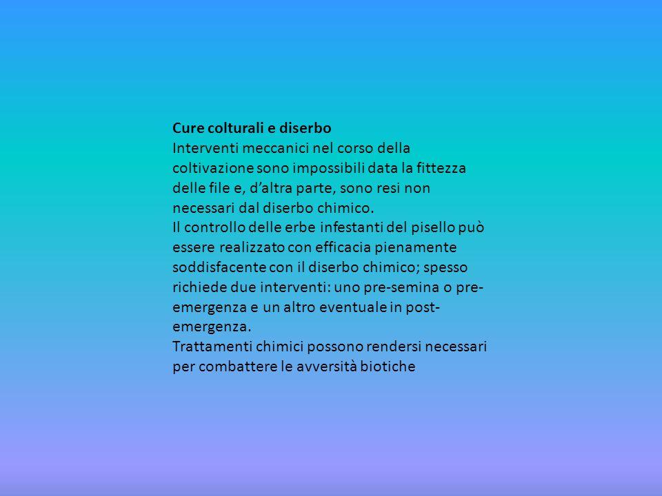 Lavoro svolto da : SCIORTINO EMANUELA PASSAFARO CRYSTAL BARLOCCO RICCARDO