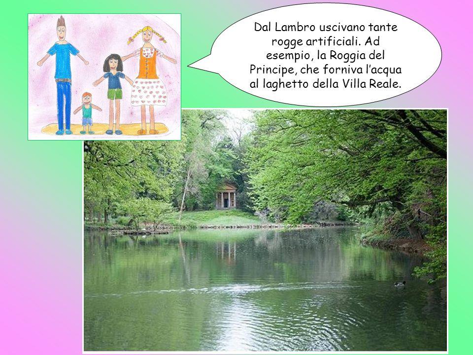 Dal Lambro uscivano tante rogge artificiali. Ad esempio, la Roggia del Principe, che forniva l'acqua al laghetto della Villa Reale.