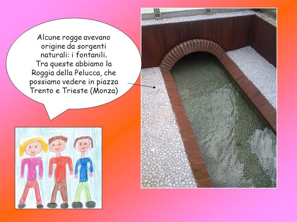 Alcune rogge avevano origine da sorgenti naturali: i fontanili. Tra queste abbiamo la Roggia della Pelucca, che possiamo vedere in piazza Trento e Tri