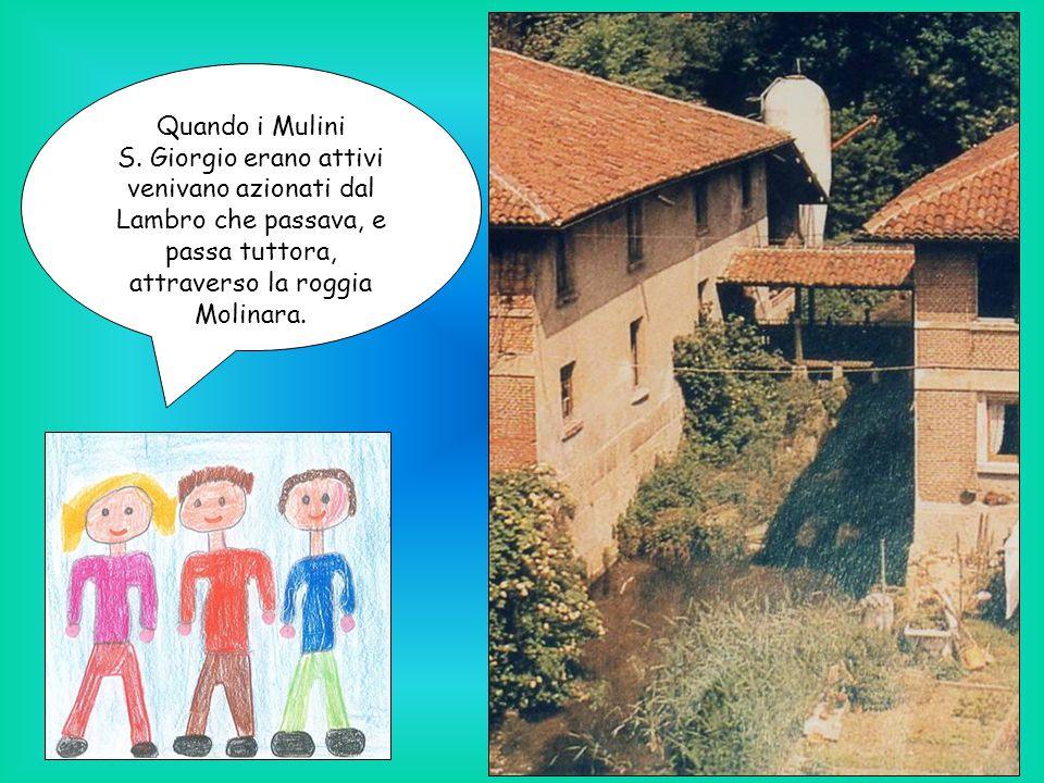 Quando i Mulini S. Giorgio erano attivi venivano azionati dal Lambro che passava, e passa tuttora, attraverso la roggia Molinara.