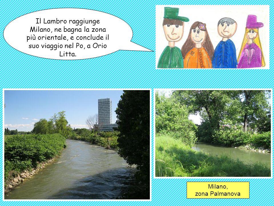 Il Lambro raggiunge Milano, ne bagna la zona più orientale, e conclude il suo viaggio nel Po, a Orio Litta. Milano, zona Palmanova