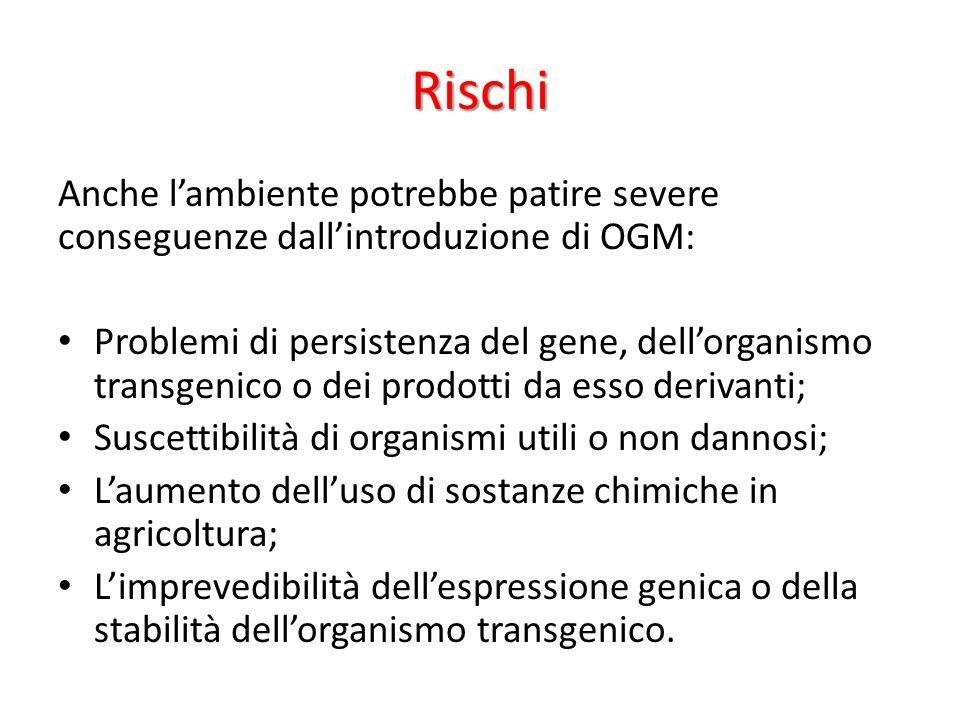 Rischi Anche l'ambiente potrebbe patire severe conseguenze dall'introduzione di OGM: Problemi di persistenza del gene, dell'organismo transgenico o de