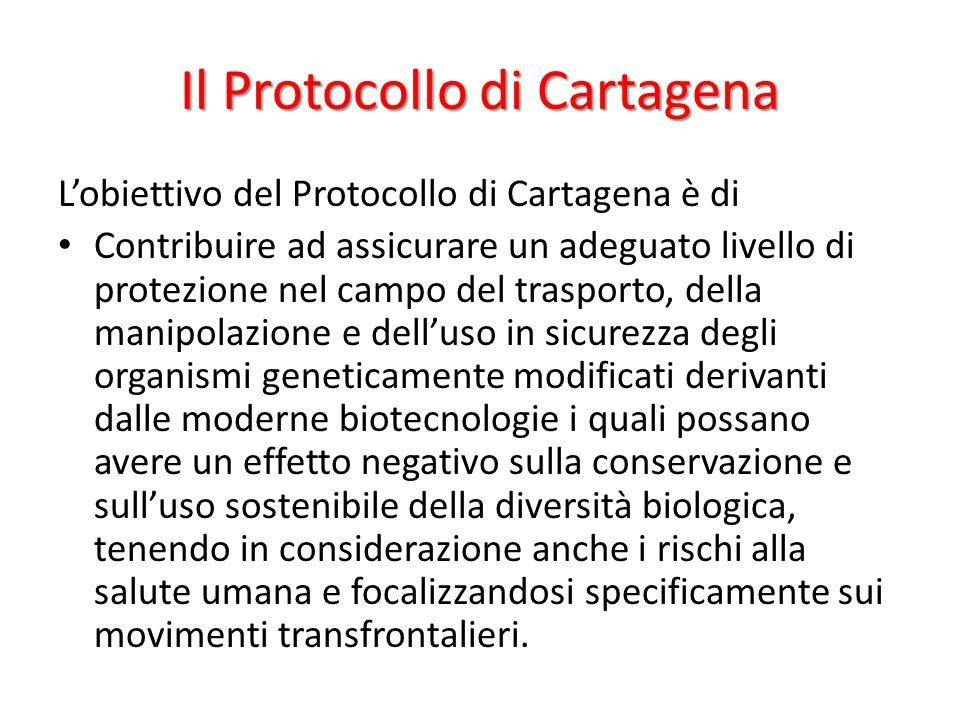 Il Protocollo di Cartagena L'obiettivo del Protocollo di Cartagena è di Contribuire ad assicurare un adeguato livello di protezione nel campo del tras