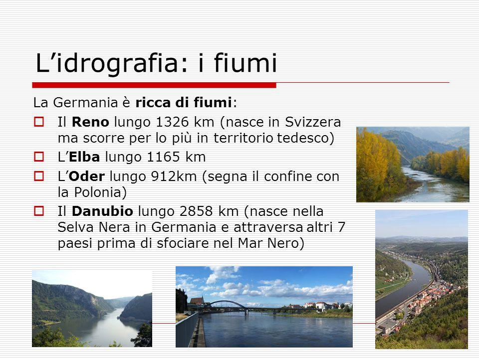 La Germania è ricca di fiumi:  Il Reno lungo 1326 km (nasce in Svizzera ma scorre per lo più in territorio tedesco)  L'Elba lungo 1165 km  L'Oder l