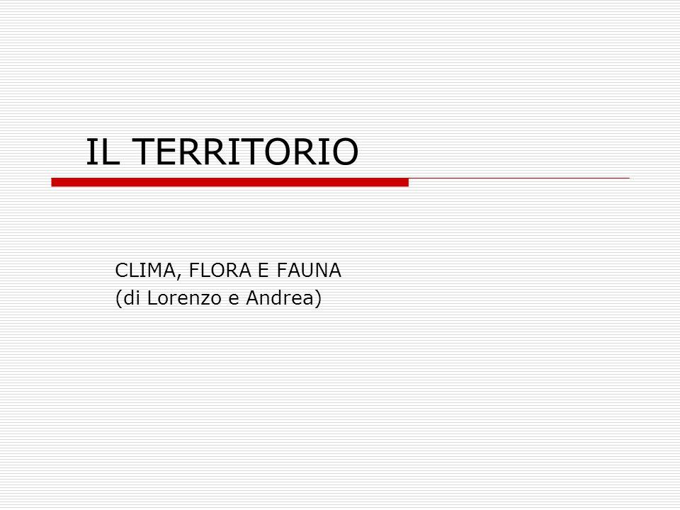 IL TERRITORIO CLIMA, FLORA E FAUNA (di Lorenzo e Andrea)