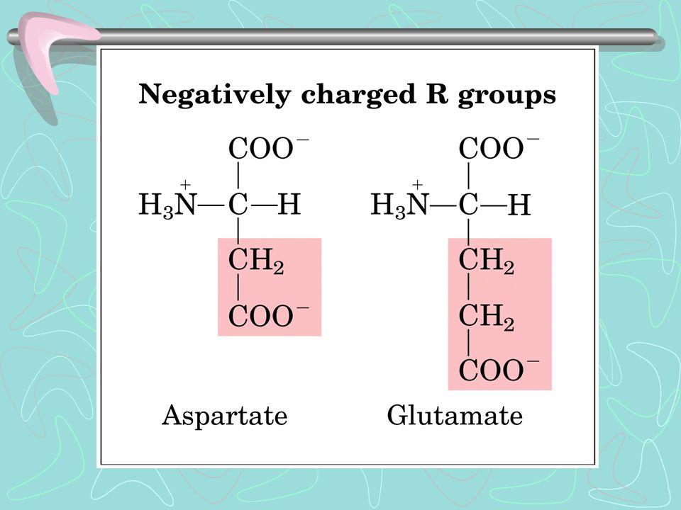 Restrizioni dell'  elica: Repulsione gruppi R carichi in prossimità delle parti C o N terminale Dimensioni R adiacenti Presenza di prolina Struttura secondaria ad  -elica La catena polipeptidica assume nello spazio una disposizione regolare e ripetitiva.