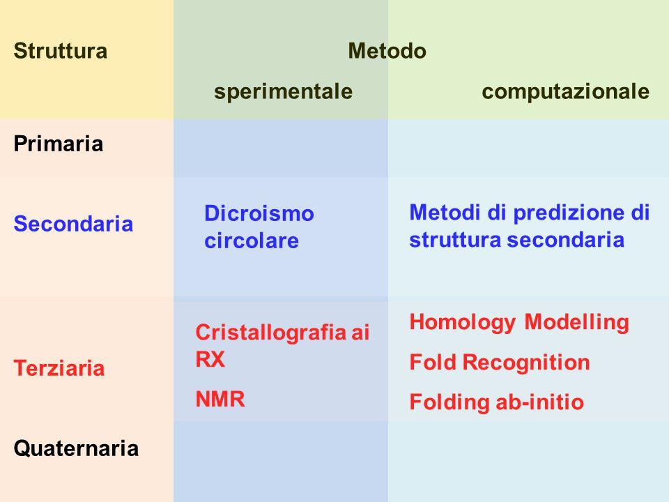 Primaria Secondaria Terziaria Quaternaria Dicroismo circolare Cristallografia ai RX NMR Metodi di predizione di struttura secondaria Homology Modelling Fold Recognition Folding ab-initio StrutturaMetodo sperimentalecomputazionale