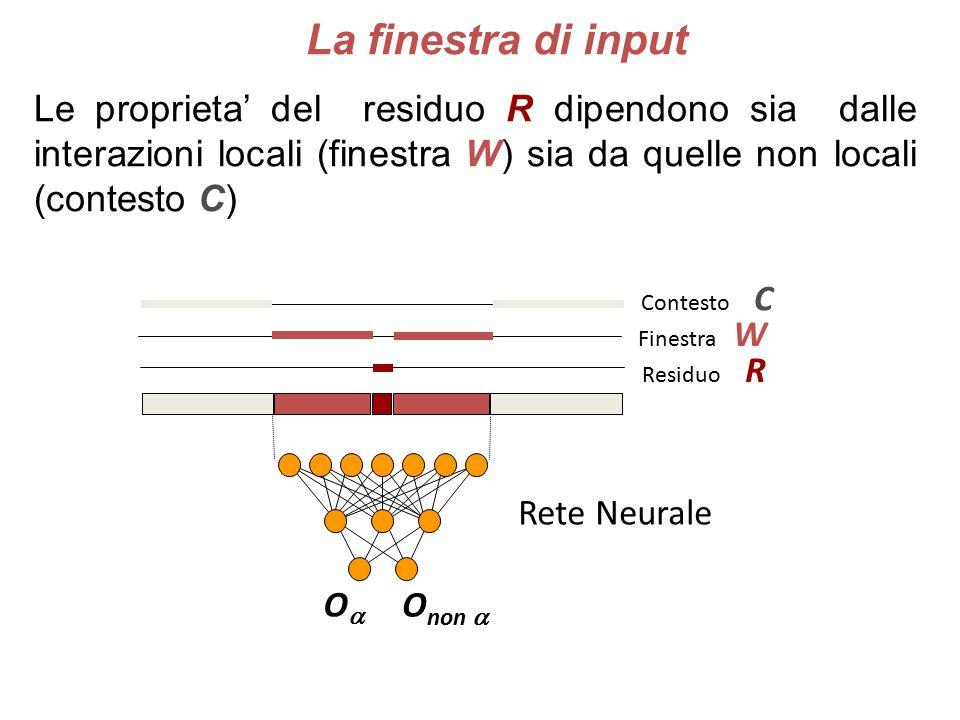 Le proprieta' del residuo R dipendono sia dalle interazioni locali (finestra W) sia da quelle non locali (contesto C) Contesto C Residuo R Finestra W OO O non  Rete Neurale La finestra di input