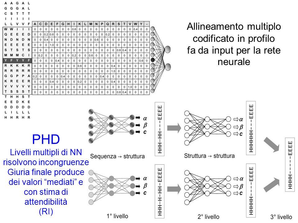 Allineamento multiplo codificato in profilo fa da input per la rete neurale PHD Livelli multipli di NN risolvono incongruenze Giuria finale produce dei valori mediati e con stima di attendibilità (RI)