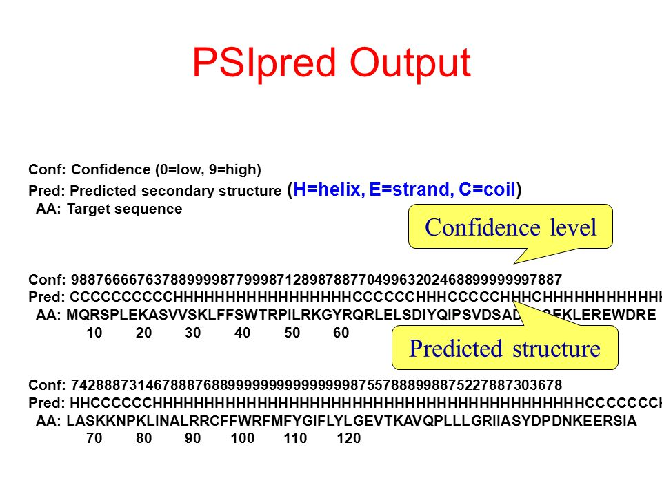 PSIpred Output Conf: Confidence (0=low, 9=high) Pred: Predicted secondary structure (H=helix, E=strand, C=coil) AA: Target sequence Conf: 988766667637