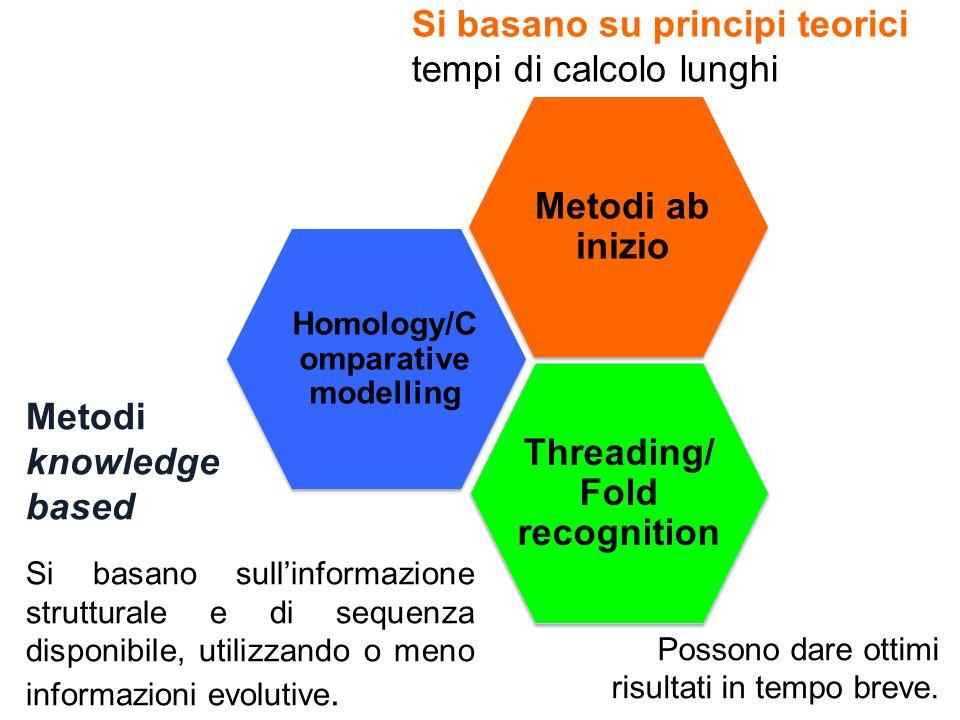 Si basano su principi teorici tempi di calcolo lunghi Metodi knowledge based Si basano sull'informazione strutturale e di sequenza disponibile, utilizzando o meno informazioni evolutive.