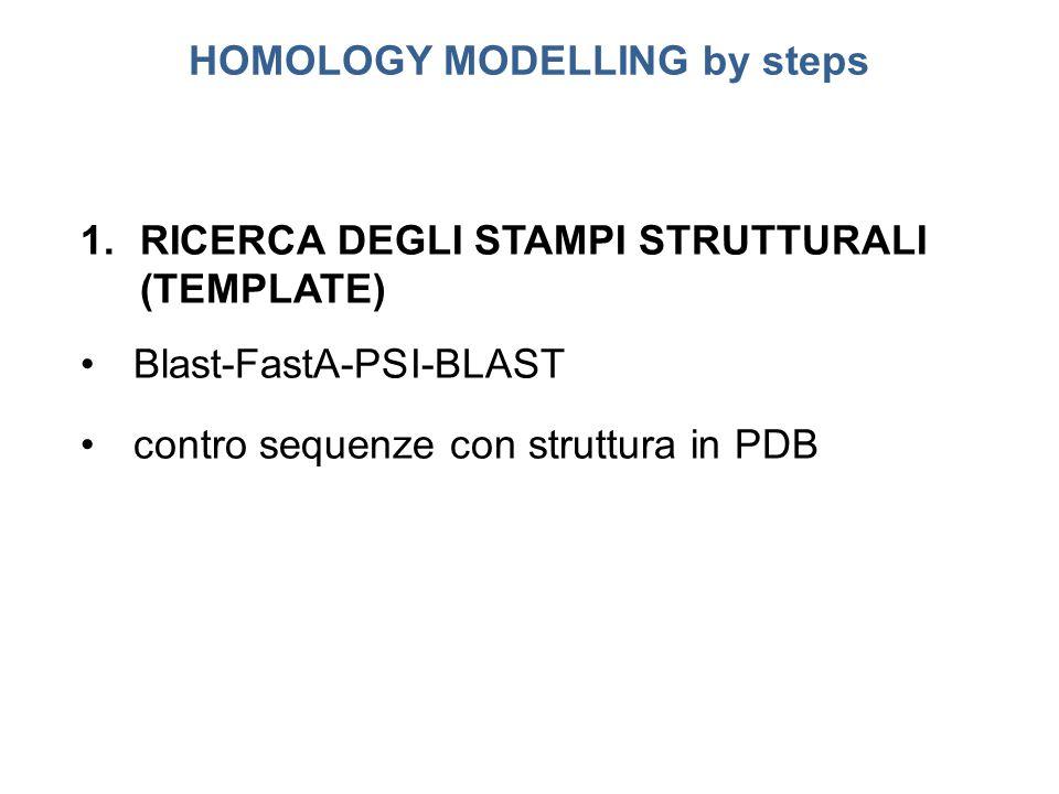 HOMOLOGY MODELLING by steps 1.RICERCA DEGLI STAMPI STRUTTURALI (TEMPLATE) Blast-FastA-PSI-BLAST contro sequenze con struttura in PDB