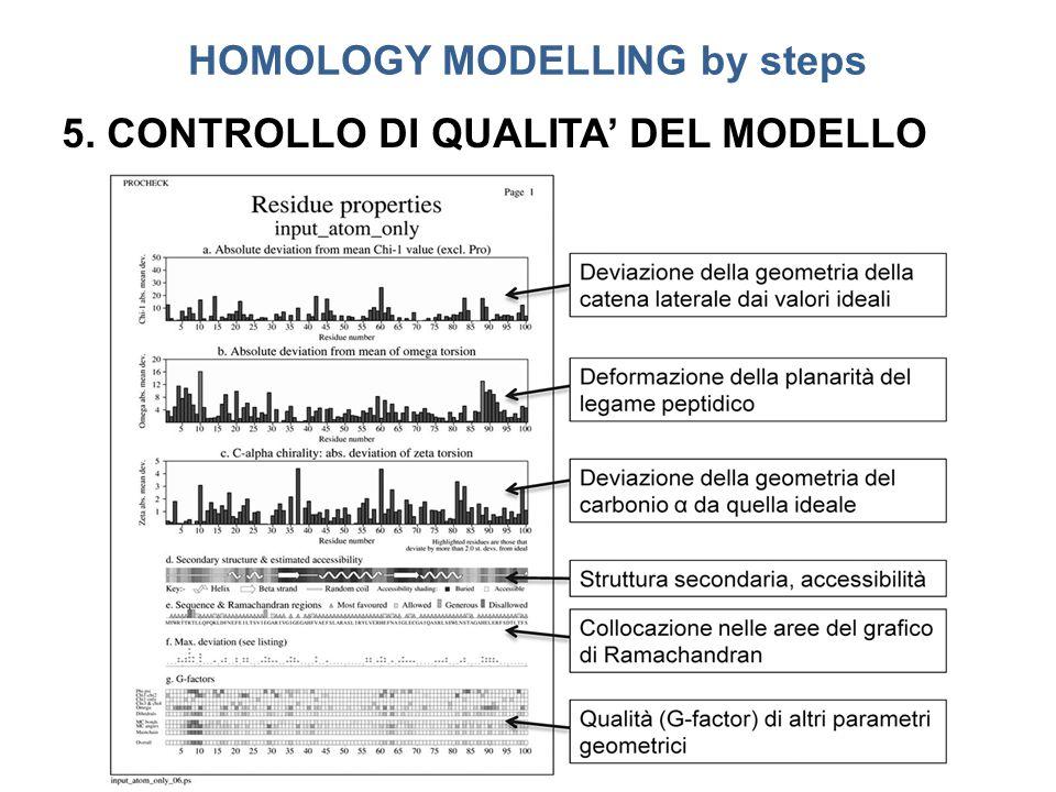 HOMOLOGY MODELLING by steps 5. CONTROLLO DI QUALITA' DEL MODELLO