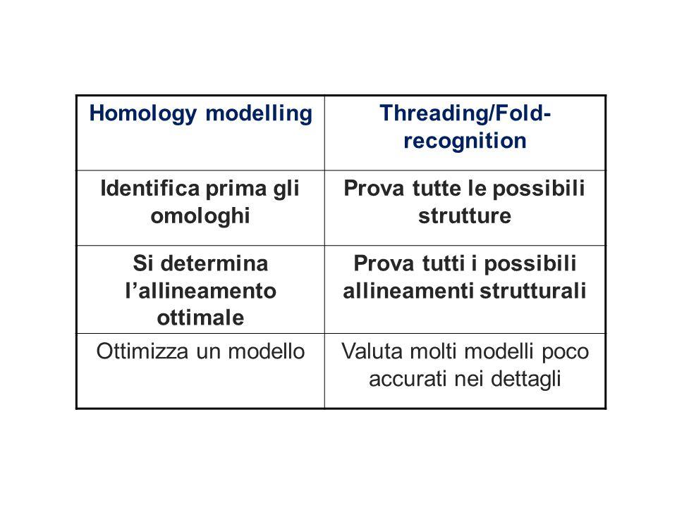 obiettivi intermedi e meno ambiziosi Homology modellingThreading/Fold- recognition Identifica prima gli omologhi Prova tutte le possibili strutture Si determina l'allineamento ottimale Prova tutti i possibili allineamenti strutturali Ottimizza un modelloValuta molti modelli poco accurati nei dettagli