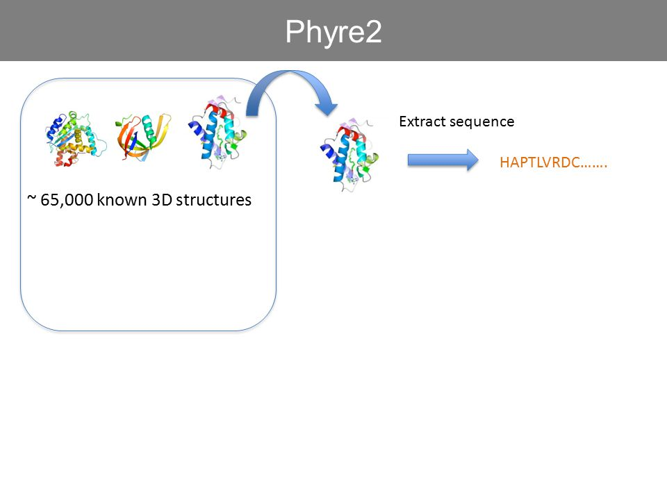 ~ 65,000 known 3D structures Phyre2 HAPTLVRDC……. Extract sequence