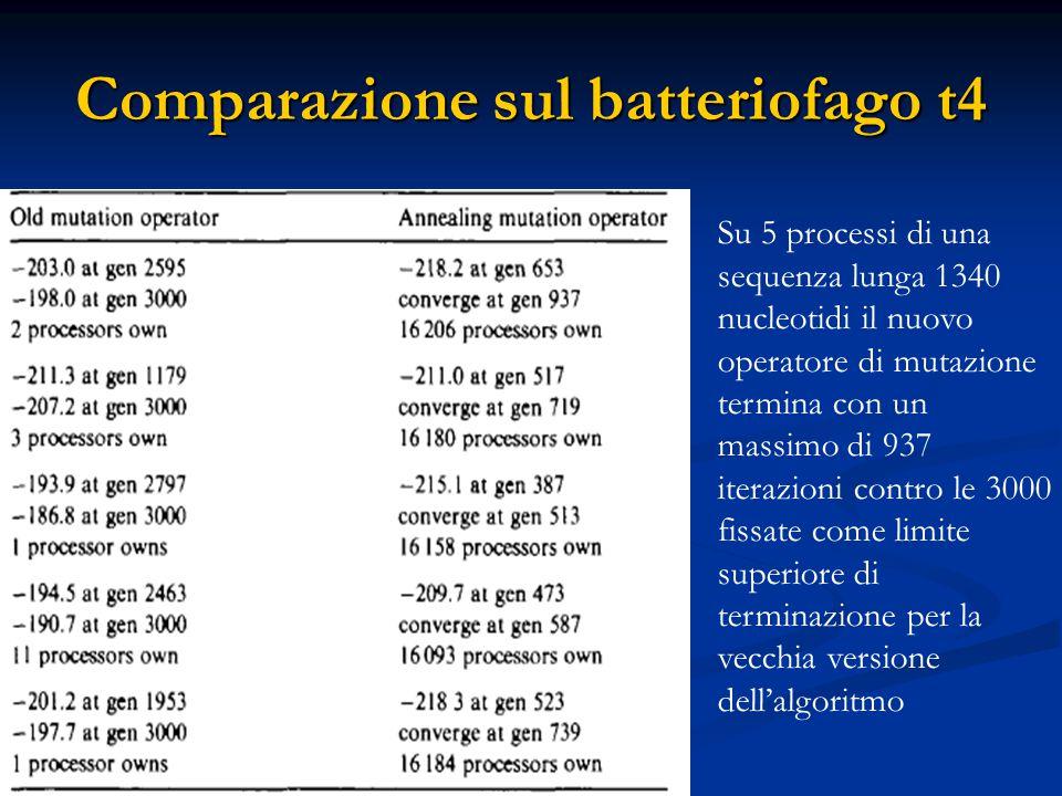 Comparazione sul batteriofago t4 Su 5 processi di una sequenza lunga 1340 nucleotidi il nuovo operatore di mutazione termina con un massimo di 937 iterazioni contro le 3000 fissate come limite superiore di terminazione per la vecchia versione dell'algoritmo