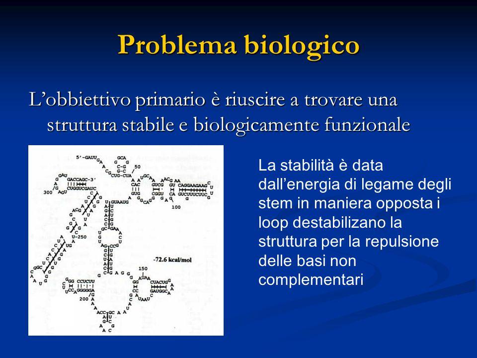 Problema biologico L'obbiettivo primario è riuscire a trovare una struttura stabile e biologicamente funzionale La stabilità è data dall'energia di le