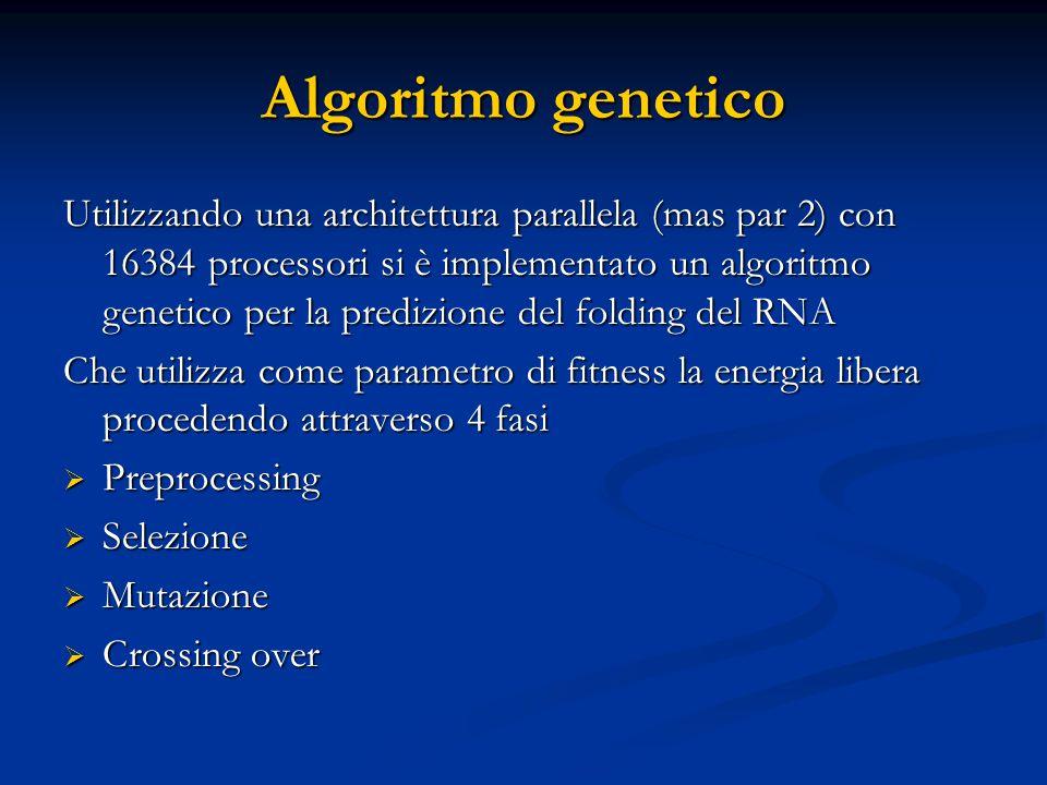 Algoritmo genetico Utilizzando una architettura parallela (mas par 2) con 16384 processori si è implementato un algoritmo genetico per la predizione del folding del RNA Che utilizza come parametro di fitness la energia libera procedendo attraverso 4 fasi  Preprocessing  Selezione  Mutazione  Crossing over