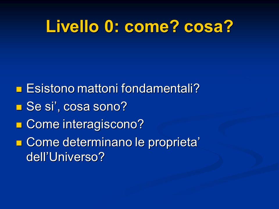 Livello 0: come? cosa? Esistono mattoni fondamentali? Esistono mattoni fondamentali? Se si', cosa sono? Se si', cosa sono? Come interagiscono? Come in