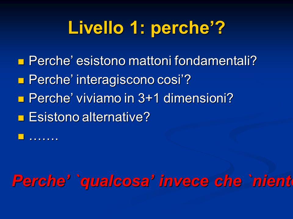 Livello 1: perche'? Perche' esistono mattoni fondamentali? Perche' esistono mattoni fondamentali? Perche' interagiscono cosi'? Perche' interagiscono c