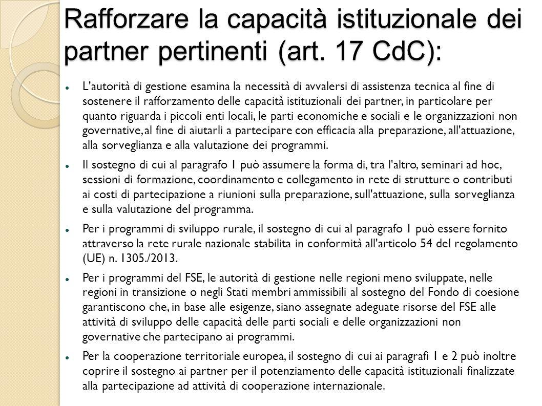 Rafforzare la capacità istituzionale dei partner pertinenti (art.
