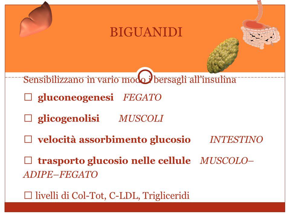 Sensibilizzano in vario modo i bersagli all'insulina  gluconeogenesiFEGATO  glicogenolisi MUSCOLI  velocità assorbimento glucosio INTESTINO  trasporto glucosio nelle cellule MUSCOLO– ADIPE–FEGATO  livelli di Col-Tot, C-LDL, Trigliceridi BIGUANIDI